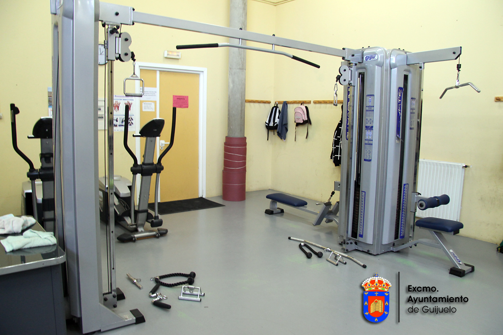 Maquina de poleas gimnasio hydraulic actuators for Poleas para gimnasio